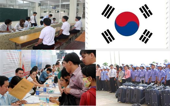 Du học nghề Hàn Quốc dễ dàng với Halo Education