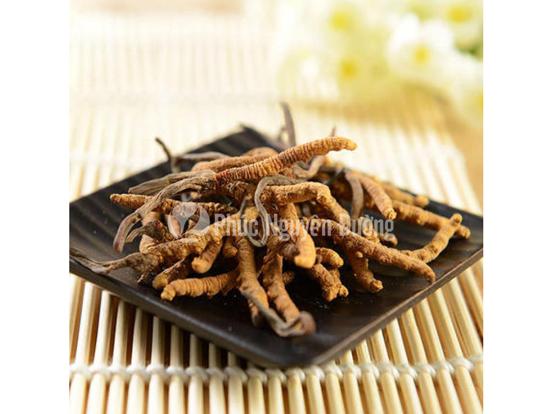 Sử dụng đông trùng hạ thảo trong chế biến món ăn đạt hiệu quả tốt hơn