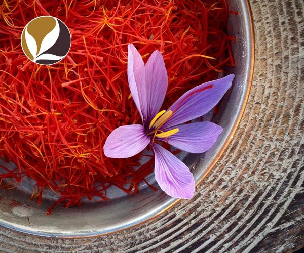 Saffron - Hồng hoa Tây Tạng