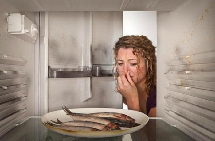 Nguyên nhân khiến thức ăn trong tủ lạnh bị hỏng